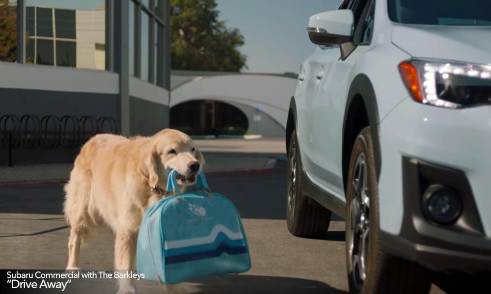 New Subaru TV Commercials feature The Barkleys - Goldstein ...